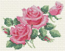 Advanced Embroidery Designs Morning Roses