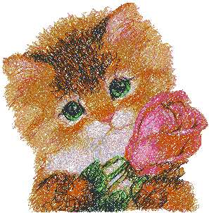 Kitty with Rose