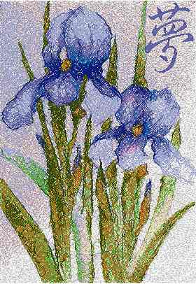 Dream Irises