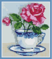 Rose in a China Cup