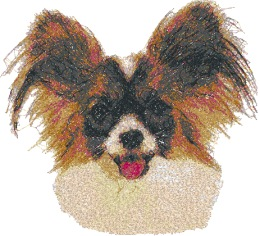 Papillon (Continental Toy Spaniel)
