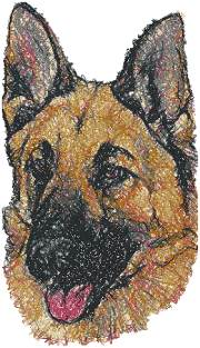 German Shepherd Dog II