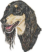Saluki (Persian Greyhound)