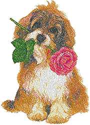 Doggy with Rose