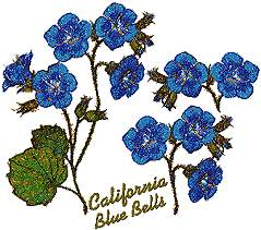 California Blue Bells Set