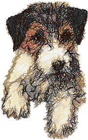 Wire Fox Terrier Puppy (Wirehaired)