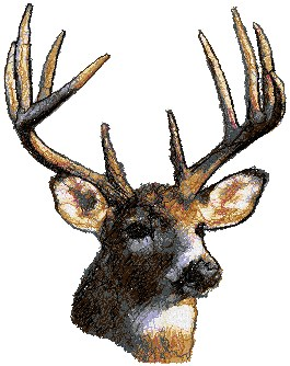 Deer Embroidery Pattern | Hunting The Buck