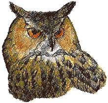 Horned Owl II