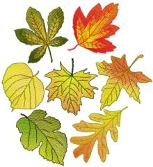 Autumn leaves machine embroidery designs.