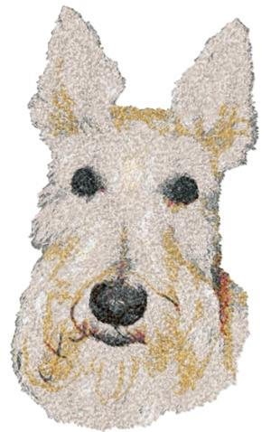 Scottish Terrier (Wheaten)