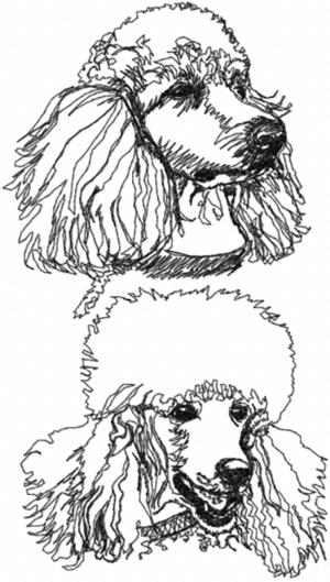 POODLE EMBROIDERY DESIGNS