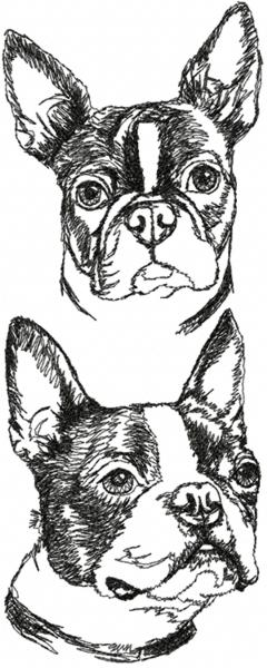 Boston Terrier Set