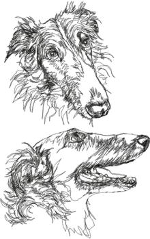 Russian Borzoi Set