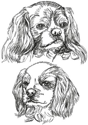 English Toy Spaniel (King Charles Spaniel) Set