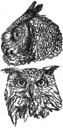 Horned Owl Set