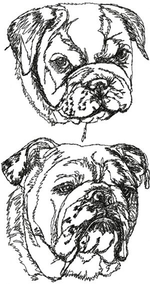 English Bulldog Set