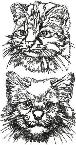 Pampas Cat Set