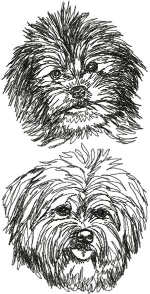Advanced Embroidery Designs Havanese Set