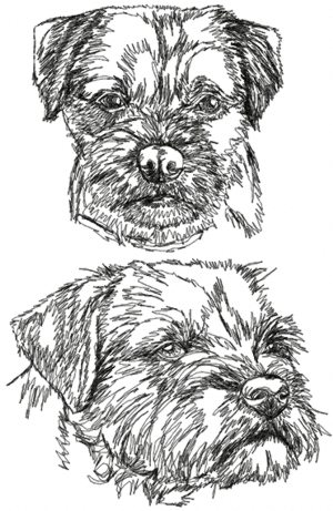 Advanced Embroidery Designs  Border Terrier Set