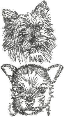 Norwich Terrier Set