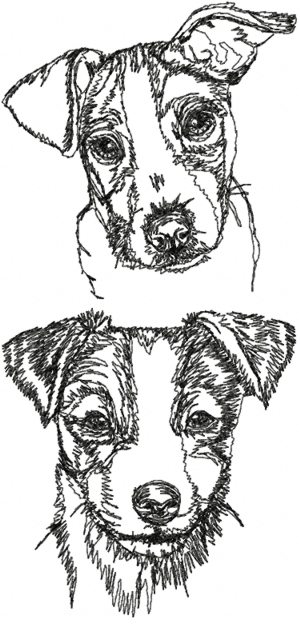 Jack Russell Terrier (Parson Russell Terrier) Set