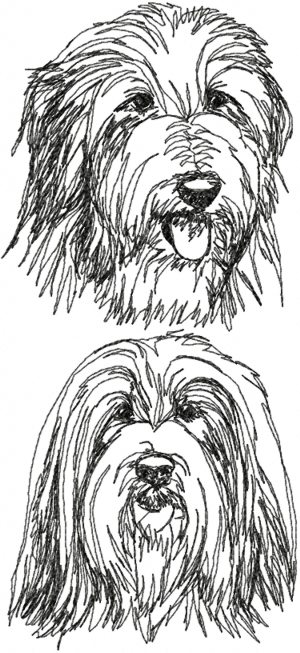 Bearded Collie (Beardie) Set