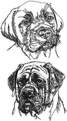 English Mastiff Set