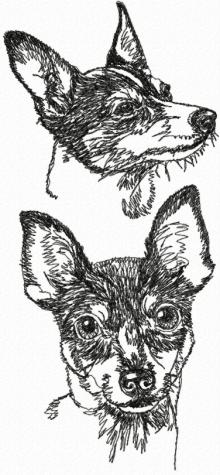 Toy Fox Terrier (American Toy Terrier) Set