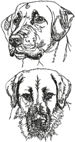 Anatolian Shepherd Dog Set