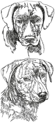 Mountain Cur Set