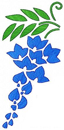 Print screen of a wisteria blossom