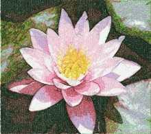 Pink lotus. Machine embroidery design.