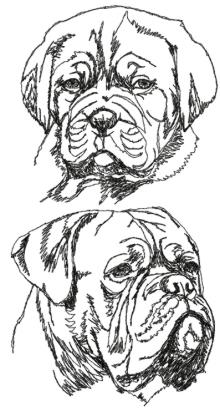 French Mastiff Set (Dogue de Bordeaux)