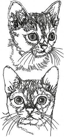 Singapura Cat Set