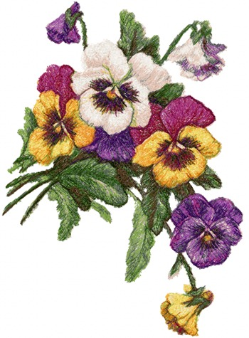 Advanced Embroidery Designs Pansies