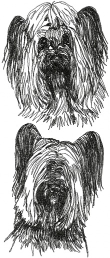 Skye Terrier Set