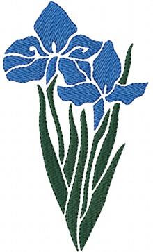 Stencil Iris