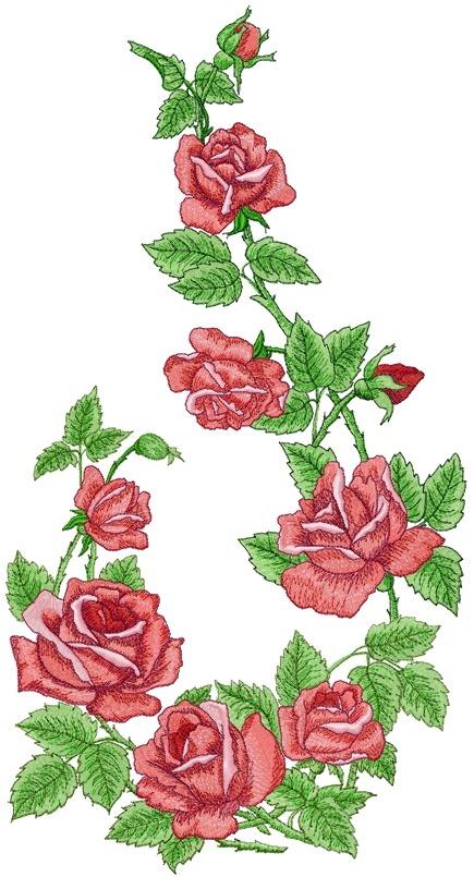 Advanced embroidery designs rose arbor set