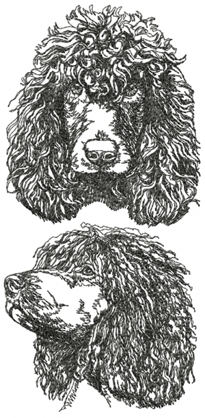 Irish Water Spaniel Set