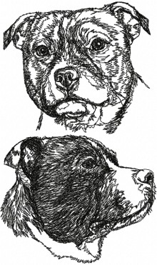 Staffordshire Bull Terrier Set
