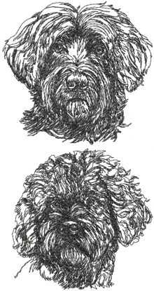 Portuguese Water Dog Set
