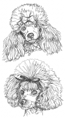 Toy Poodle Set Machine Embroidery Design
