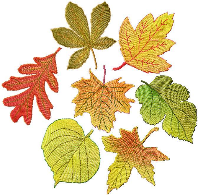 FSL Autumn Leaves Set