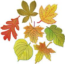 FSL Autumn Leaves Set