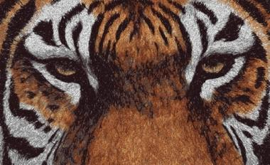 Advanced Embroidery Designs Tiger Eyes