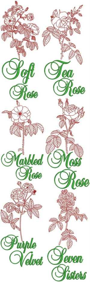 Advanced embroidery designs garden rose redwork set iii for Garden embroidery designs free