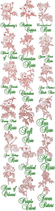Garden Rose Redwork Sets I, II and III