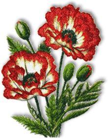 Picotee Oriental Poppy - machine embroidery design.