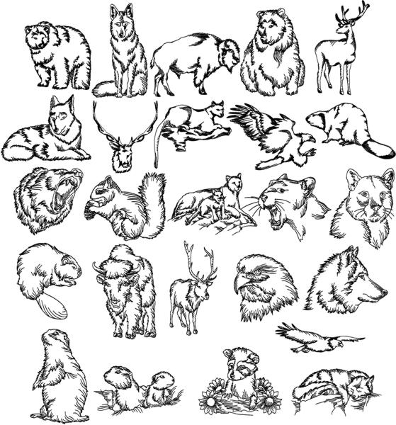 Advanced Embroidery Designs North American Wild Animal Set