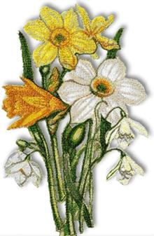 Print screen of a daffodil bouquet embroidery design
